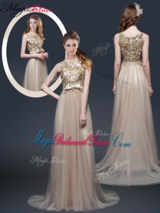 Luxurious Brush Train Bridesmaid Dresses with Appliques and Bowknot